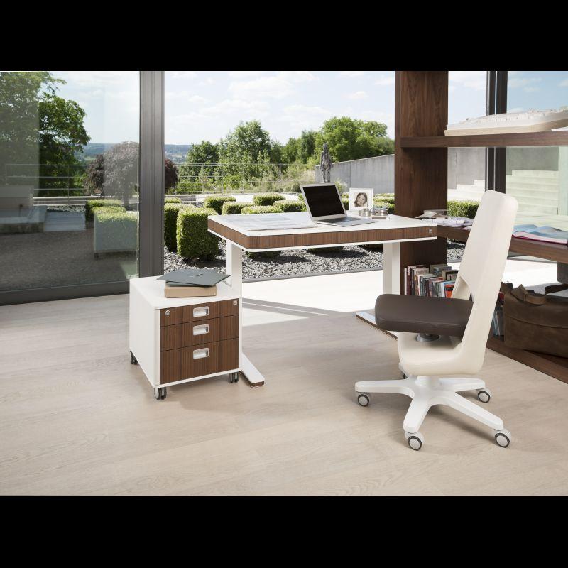 moll unique T7 Nussbaum elektrisch hoehenverstellbar Schreibtisch home office