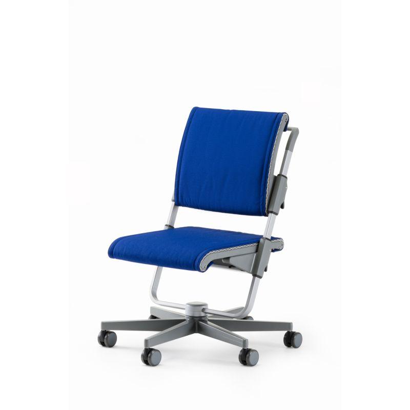 moll Scooter grau blau